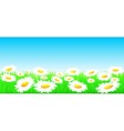 natural background with flowers and sun vector image vector image