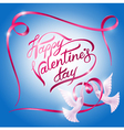 doves on Valentines Day vector image vector image