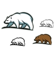 Arctic bears vector image