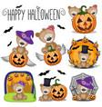halloween set with cartoon teddy bear vector image
