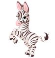 Cute baby zebra vector image