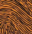 animal skin background pattern vector image