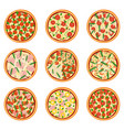 set of appetizing pizzas vector image