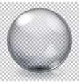 Transparent glass sphere with scratches vector image