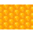 Honeycomb seamless background vector image