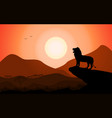 silhouette king lion african nature vector image