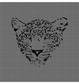 cheetah made from textured background vector image