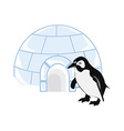 Snow house igloo and penguin vector image