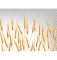 Ears of wheat horizontal pattern EPS 10 vector image