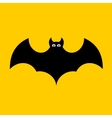Cartoon Bat on Orange Background Flat design vector image
