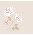 Delicate vintage card with some white roses vector image