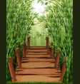 wooden bridge in bamboo forest vector image