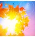 Delicate autumn sun with glare on blue sky vector image