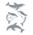 dolphins set vector image vector image