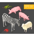 animals collection isometric vector image