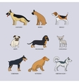 Doodle dog breeds set vector image