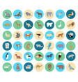 domestic and wild animal in circles collection vector image