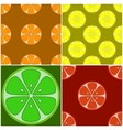 backgrounds citrus fruit vector image