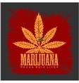 Cannabis - marijuana leaf on grunge background for vector image