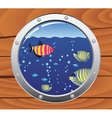porthole and colorful fishes vector image vector image