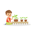 cute little boy learning about plants during vector image