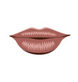 object lips pink isolated vector image