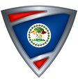 steel shield with flag belize vector image