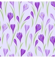 Spring flowers crocus natural seamless pattern vector image vector image