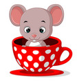cute cartoon mouse in a cup vector image