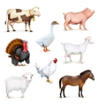 Animals and birds vector image