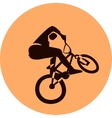 bicycle racer vector image