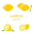 flat lemon icons set vector image