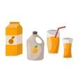 Fresh orange juice vector image