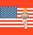 statue of liberty hand with torch and usa flag on vector image