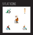 Flat icon handicapped set of equipment vector image