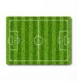 Green grass soccer field vector image
