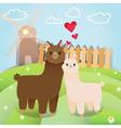 alpacas couple vector image vector image