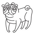 cute little pug dog vector image