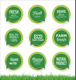 modern ecology sticker and tag green collection vector image