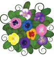 pansies bouquet vector image