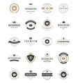 Vintage Crowns Logos Set design elements vector image