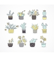 Cute hand drawn cactus set vector image vector image