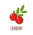Cranberry icon in flat style on white background vector image