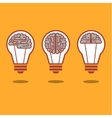 Brain and bulb light vector image