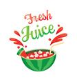 Fresh Watermelon Juice vector image