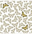 ornament with butterfly vector image vector image