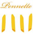 Pennette pasta vector image