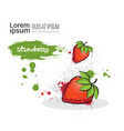 strawberry hand drawn watercolor fruit on white vector image