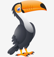 Toucan bird cartoon vector image
