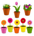 flowers in pot collection vector image